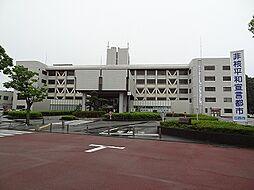 印西市役所(1...