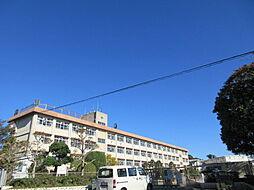 吉野東小学校