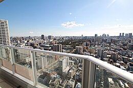 眺望良好です。 天気が良い日には東京タワー、富士山、葛西臨海公園の観覧車が見えます。