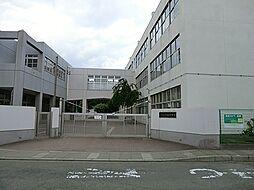 渋谷小学校