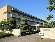 小学校ひたちなか市田彦小学校まで316m