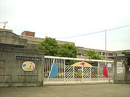 野口南幼稚園…...