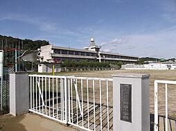 関屋小学校