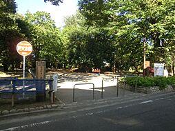 公園井頭の森緑...