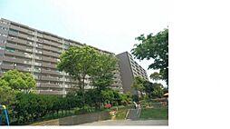 本郷台サンハイツ  5階