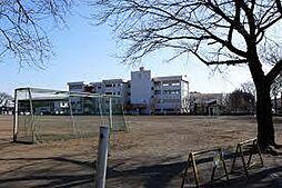 学区:大田小学...