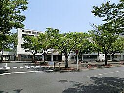 神奈川県立病院...