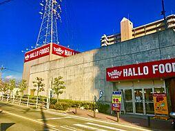 ハローフーズ(植田店)徒歩12分(900m)買い物施設が充実した立地です