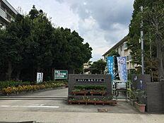 海南中学校