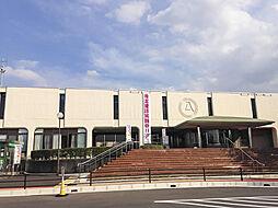 富士見市役所(...