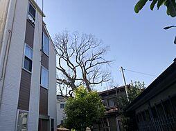 神奈川県横浜市南区南太田3丁目