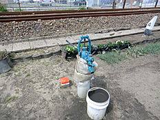 水道設備(井戸)完備