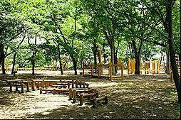 伊佐沼公園 2...