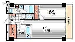 本町橋タワー[16階]の間取り