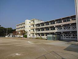 蛭間小学校