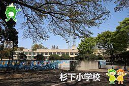 杉下小学校(8...