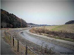 桜川緑地まで1...
