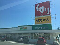 スギ薬局吉良店