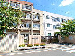 七松小学校  ...