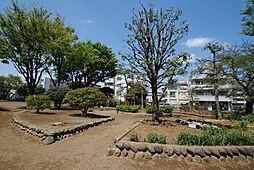 南台ふじみ公園...