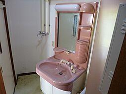 洗面台には収納...
