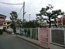田柄保育園まで...