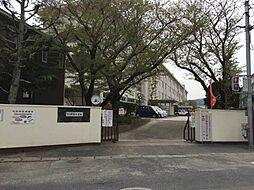 弥永小学校