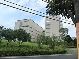 コスモ新百合丘2[3階]の外観