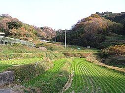 近隣の風景