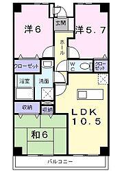 昭和エクセランマンション[0204号室]の間取り
