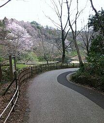 公園座間谷戸山...