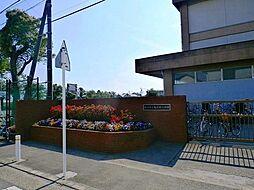 亀井野小学校