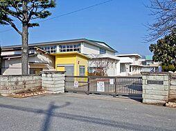 辰巳台西小学校...