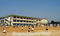 小学校亀川小学...