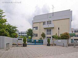 榛松中学校54...