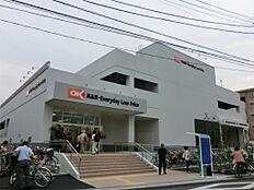OK(オーケー) 亀戸店(450m)