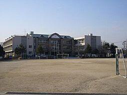小学校桜井小学...