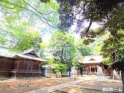 -氷川神社-大...