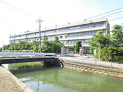 中学校加須市立...
