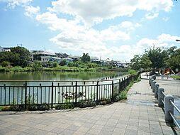 区立小池公園