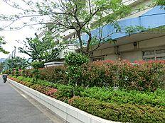 豊洲幼稚園(約350m5分)