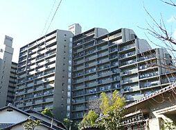 千里中央パーク・ヒルズG塔[7階]の外観