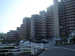 ライオンズマンション千代田 壱番館