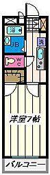 千葉県松戸市紙敷1丁目の賃貸マンションの間取り