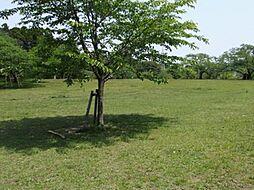 三神峯公園まで...