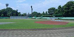 横山公園 陸上...