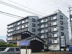 諏訪野ビル[3階]の外観