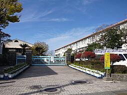 玉江小学校