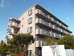 大阪府羽曳野市伊賀5丁目の賃貸マンションの外観