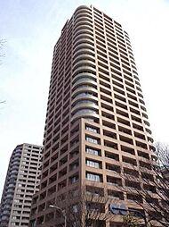 西早稲田パーク・タワー 南西向き 広々リビング WIC 眺望良好